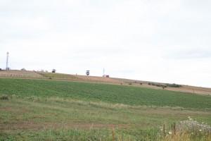 Tovuz Təcrübə Stansiyasının Sarıtala ərazisində milli kartof sortlarının toxumları yetişdirilir